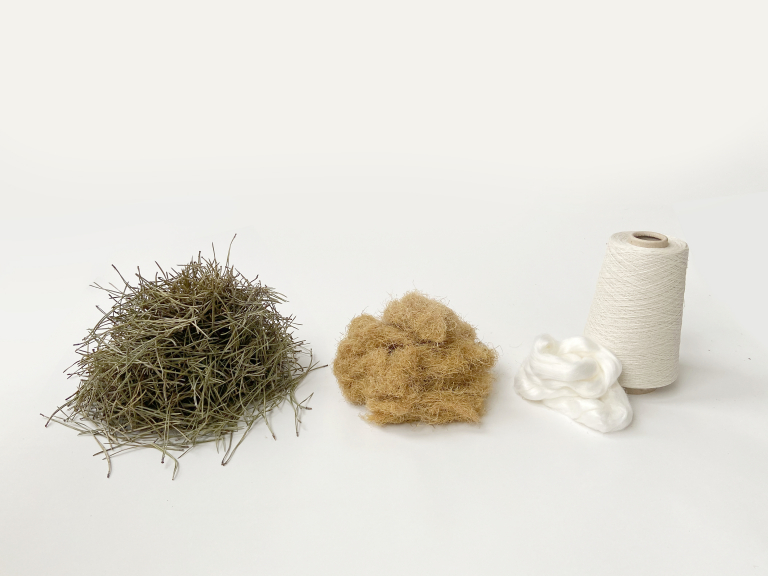 Forest Wool